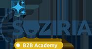 Академія B2B Сузір'я